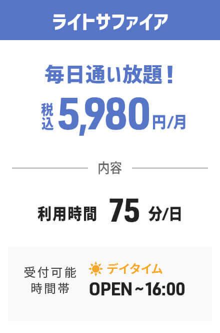 予約不要で高級エステマシンが月額税込5,980円で使い放題のライトサファイアプラン